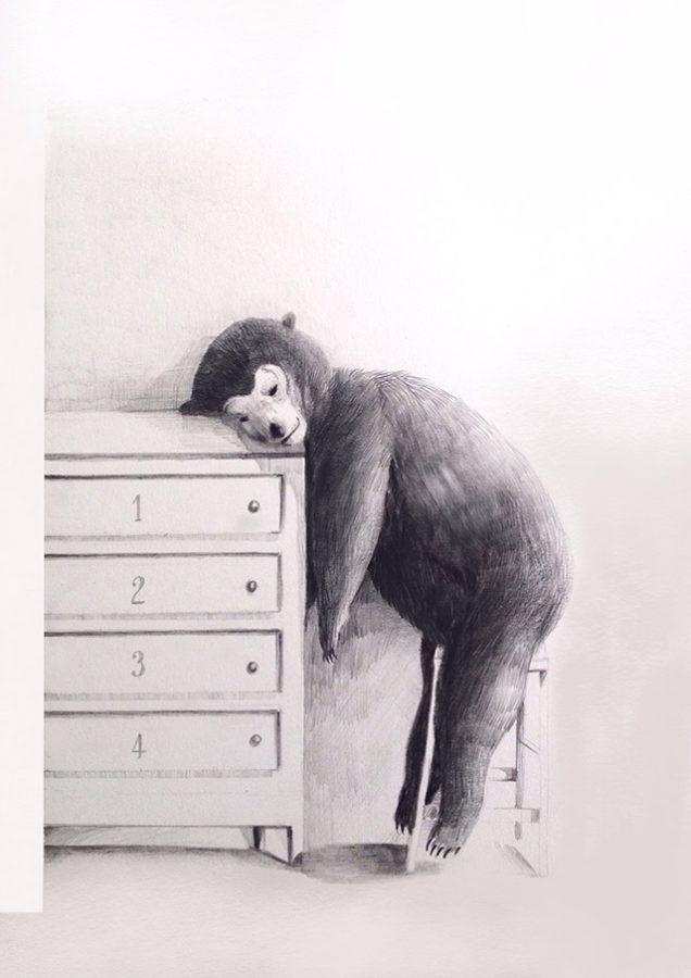 l'orso dormiglione